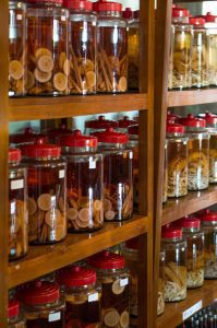 Infusion jars containing rice wine and other ingredients (Source: Wikimedia Commons)
