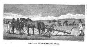 Turn-wrest plow used by Anne de Bourgh in Rosings Park